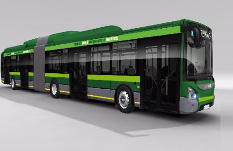 bus verde